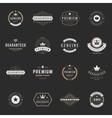 Retro Vintage Premium Quality Labels set vector image