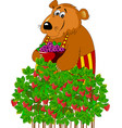beautiful bear and raspberry vector image