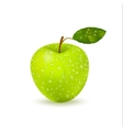 Isolated Wet Green Apple With Water Drops vector image