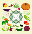 the food vector image