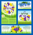 spring flowers holiday posters and banners vector image