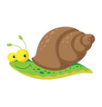 snail funny vector image