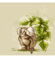 Tropical background with monkey vector image vector image