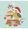 Christmas owl family vector image vector image