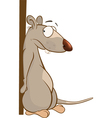 Cute Rat Cartoon Character vector image
