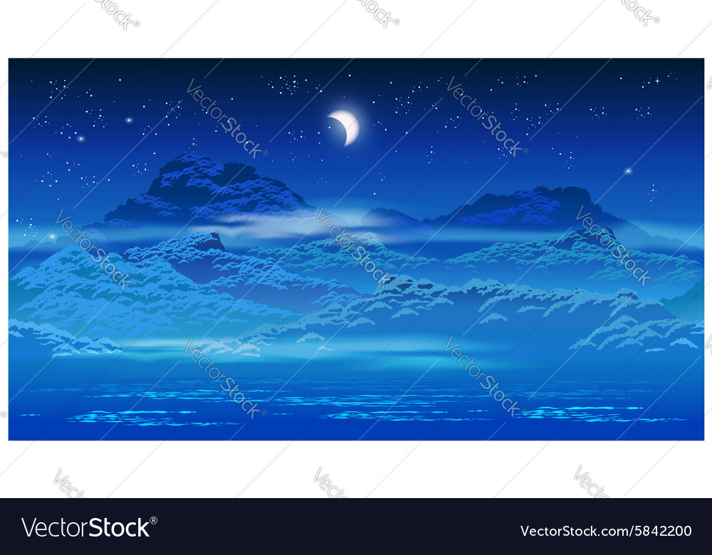 Overgrown coast at night vector