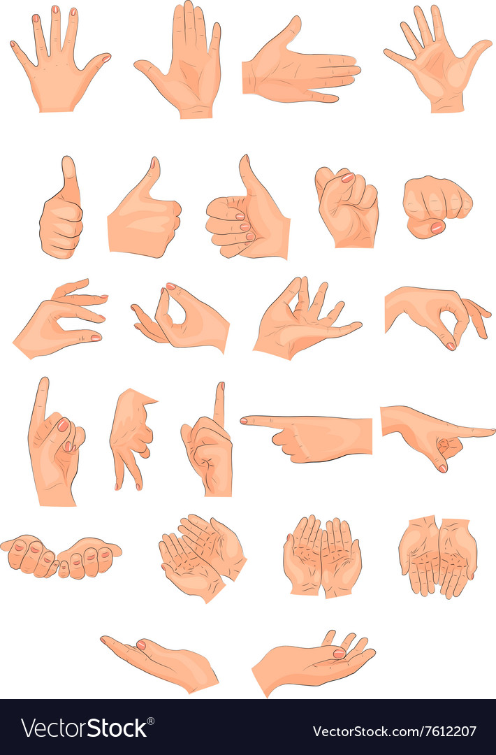 Different positions of the hands vector