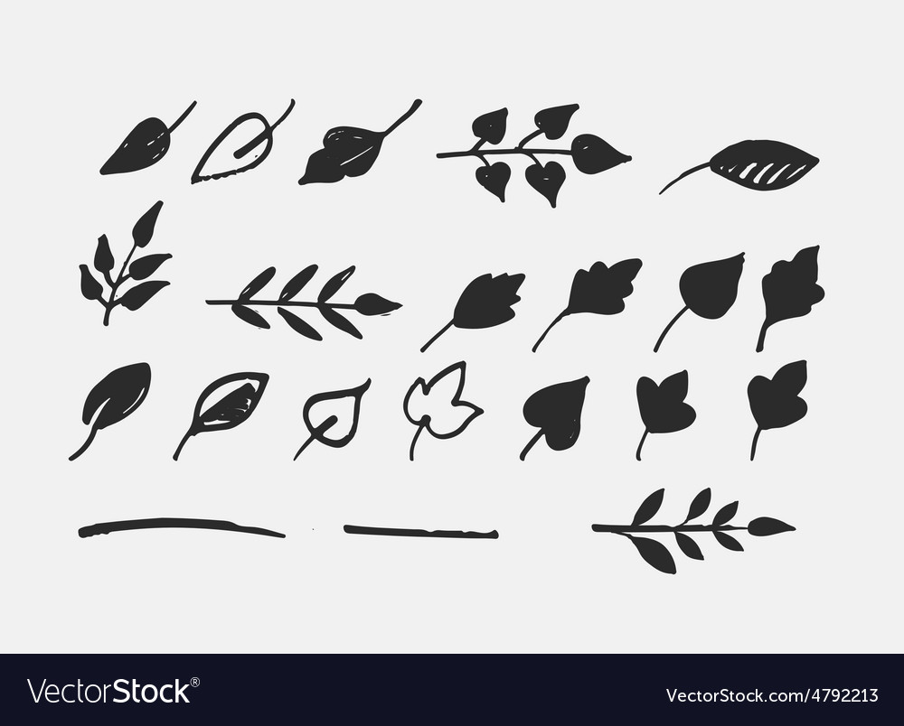 Hand drawn leaves icons and elements vector