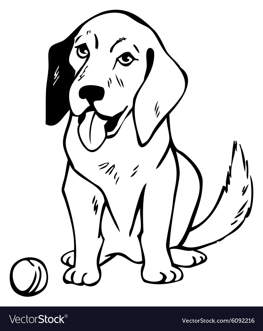 Drawing dog with ball vector