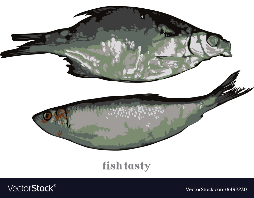 Two cooked fish vector