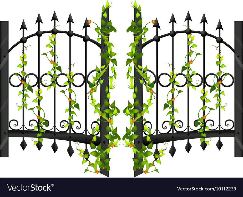 Fence design with vine and flower vector