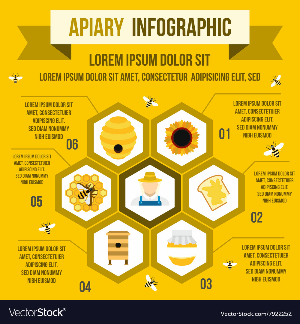 Apiary infographic flat style vector