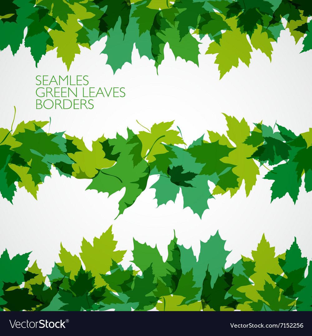 Border with green leaves vector