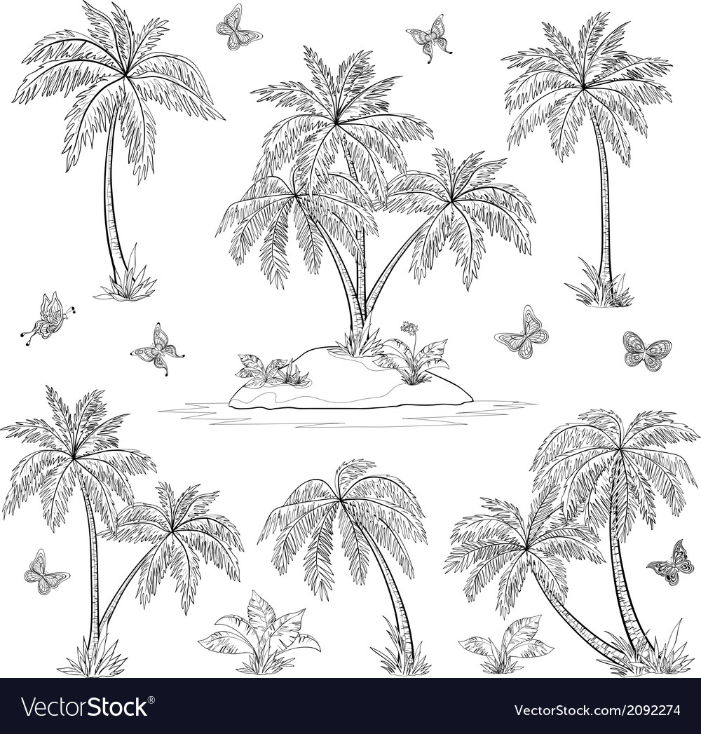 Tropical island palms and butterflies outline vector