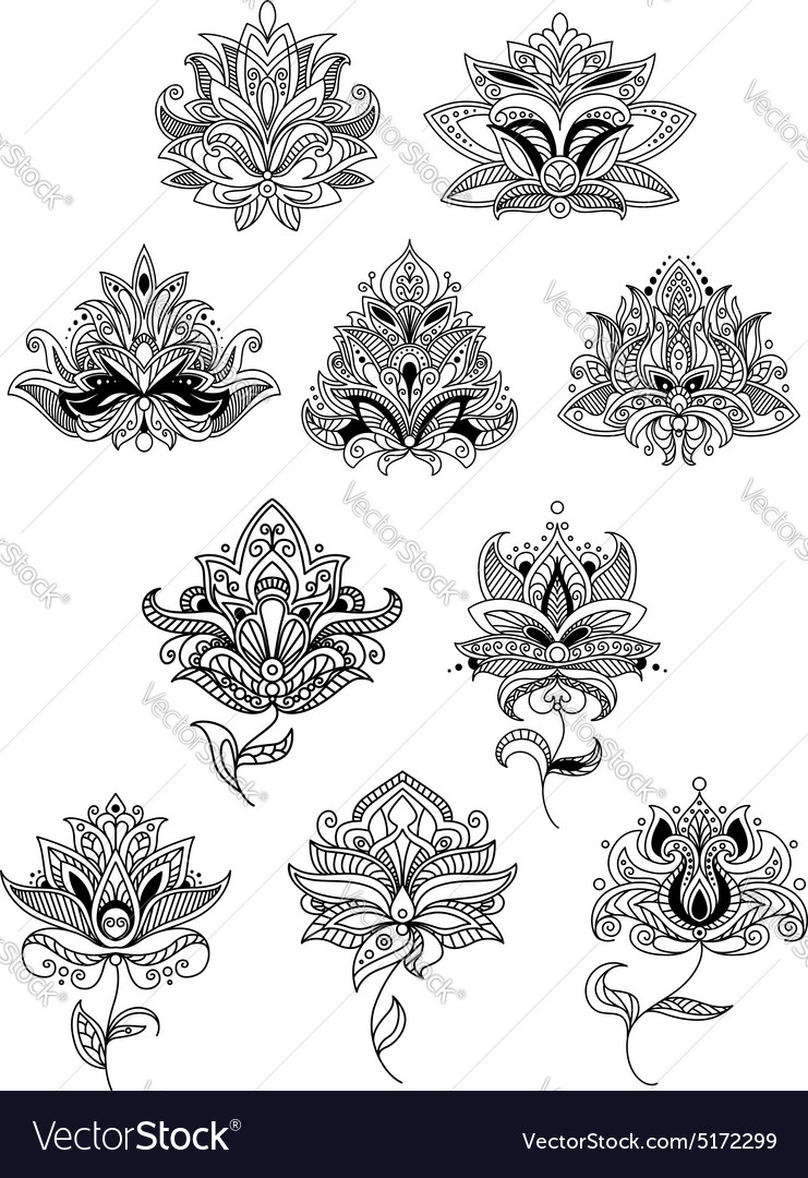 Indian flowers in ethno style with paisley blooms vector