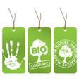 organic tags vector image