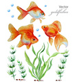 Watercolor collection of hand drawn goldfishes vector image