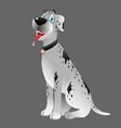 Dog Great Dane white sitting 3 vector image