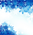 Winter background snowflakes hoarfrost vector image