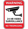Video surveillance cctv label vector image vector image