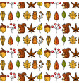 autumn squirrel acorn leaves natural seamless vector image vector image