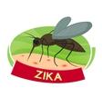 Virus Zika vector image