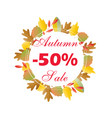 autumn sale circle banner with bright fall leaves vector image