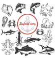 set of seafood icons isolated on white background vector image
