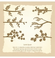 Vintage poster with tree branches silhouette vector image