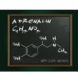 adrenalin molecule image vector image