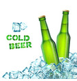 Beer Bottles And Ice vector image