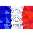 Pray for Paris with Peace symbol vector image