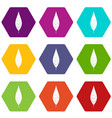 leaf of willow icon set color hexahedron vector image
