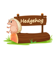 Cartoon zoo Hedgehog sign vector image vector image