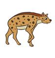 hyena standing vector image