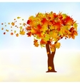 Maple tree autumn leaf fall EPS 8 vector image