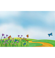 butterflies in field vector image