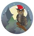 Christmas Owl2 vector image
