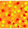 Seamless pattern with red and yellow autumn leaves vector image