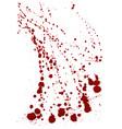 dry blood splatter modern background vector image