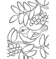 Titmouse on the ash tree vector image