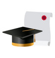 graduation cap and diploma college degree vector image
