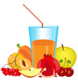 cocktail from fruit and vegetables vector image