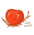 drawing slice of tomato with juice vector image