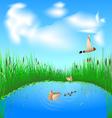 lake and ducks vector image