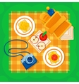Picnic on the grass vector image