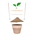 Terracotta Flower Pots with Soil and Young Plant vector image