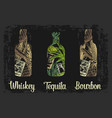 whiskey and tequila bottle with glass ice cubes vector image