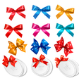 Big collection of colorful gift bows and labels vector image vector image