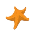 Isolated starfish sketch vector image